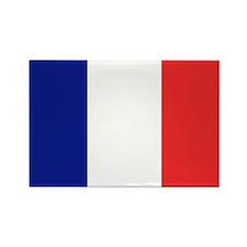 Flag of France Rectangle Magnet (10 pack)