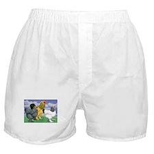 Three Brahmas Boxer Shorts