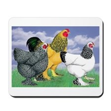 Three Brahmas Mousepad