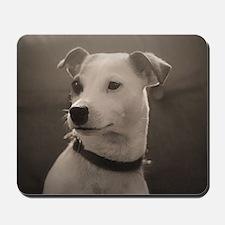 Puppy Portrait Mousepad