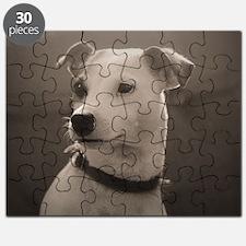 Puppy Portrait Puzzle