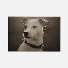 Puppy Portrait Rectangle Magnet