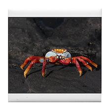Sally Lightfoot Crab Galapagos Tile Coaster