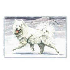 Vintage Samoyed Postcards (Package of 8)