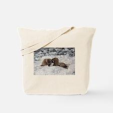 Baby Sea Lions Galapagos Tote Bag