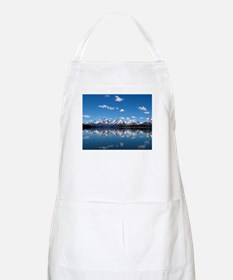 GRAND TETON - JACKSON LAKE Apron