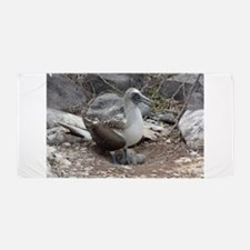 Blue-footed Booby with Baby Galapagos Beach Towel