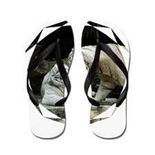 Kiss love and joy White Bengal Tigers 1 Flip Flops