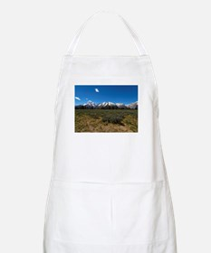 Grand Teton Scenic View Apron