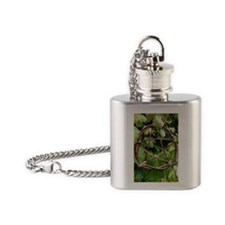 Grapevine Pentacle Flask Necklace