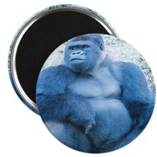 "Silverback Gorilla 2.25"" Magnet (100 pack)"