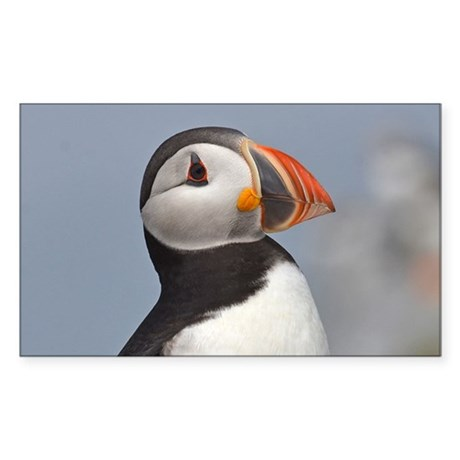 Puffin Sticker (Rectangle)