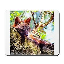 Lazy Fox Mousepad