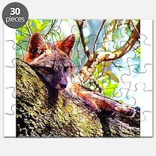 Lazy Fox Puzzle