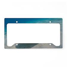Sting Rays License Plate Holder
