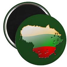 """Lithuania Bubble Map"" Magnet"