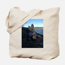 Fennecus Beach Tote Bag