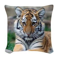 Rest and Recharge for bigger success Big Tiger Cu