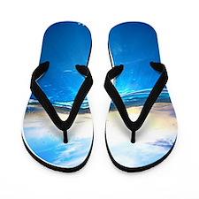 Underwater Ocean Flip Flops