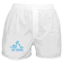 Big Brother Dinosaur Boxer Shorts