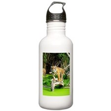 Ready for success Tiger - Copy (3) Water Bottle