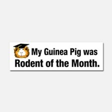 Guinea Pig of the Month Car Magnet 10 x 3