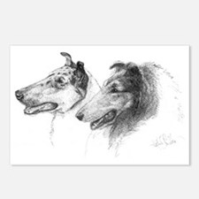 Rough & Smooth Collies Postcards (8)