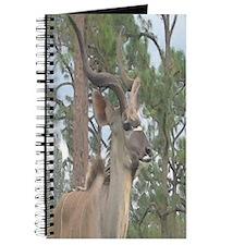 Greater Kudu series 2 Journal