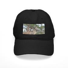 Greater Kudu series 2 Baseball Hat