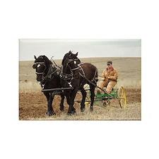 Unique Belgian draft horse Rectangle Magnet