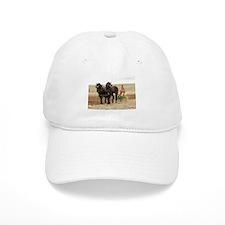 Unique Clydesdale horses Baseball Cap
