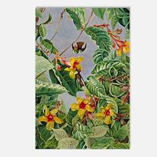Botanical Gardens: Brazil Postcards (Package of 8)