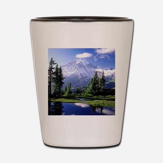 Reflection Shot Glass