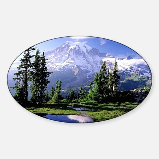 Reflection Sticker (Oval)