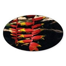 Heliconia series 2 Oval Decal