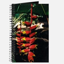 Heliconia series 2 Journal