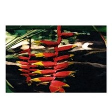 Heliconia series 2 Postcards (Package of 8)