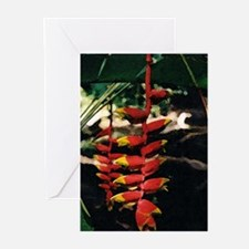 Heliconia series 2 Greeting Cards (Pk of 10)