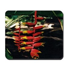 Heliconia series 2 Mousepad