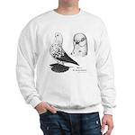 Warsaw Butterfly Pigeon Sweatshirt