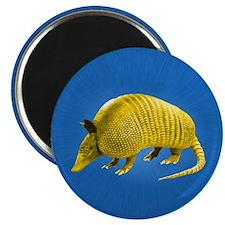 Yellow Armidillo on Blue Magnets