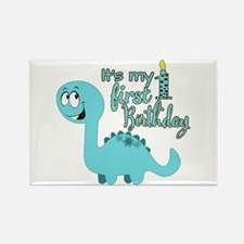 Dinosaur First Birthday Rectangle Magnet