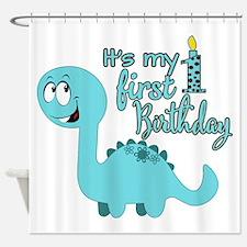 Dinosaur First Birthday Shower Curtain