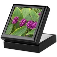 Naples wild berries Keepsake Box