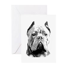 Cane Corso Dog Greeting Cards