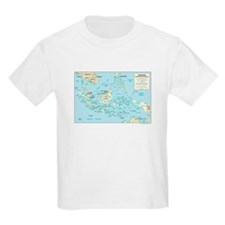 Indonesia Map T-Shirt