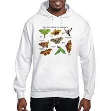 Moths of North America Hoodie