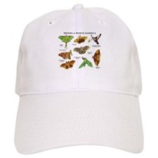 Moths of North America Baseball Cap
