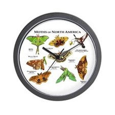 Moths of North America Wall Clock