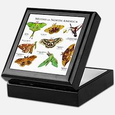 Moths of North America Keepsake Box